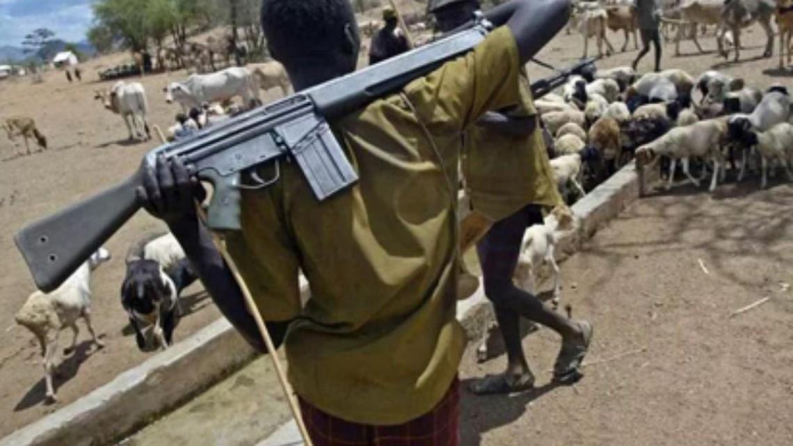 Resultado de imagen de fulani cristianos